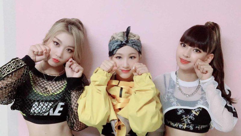 3YE integrantes